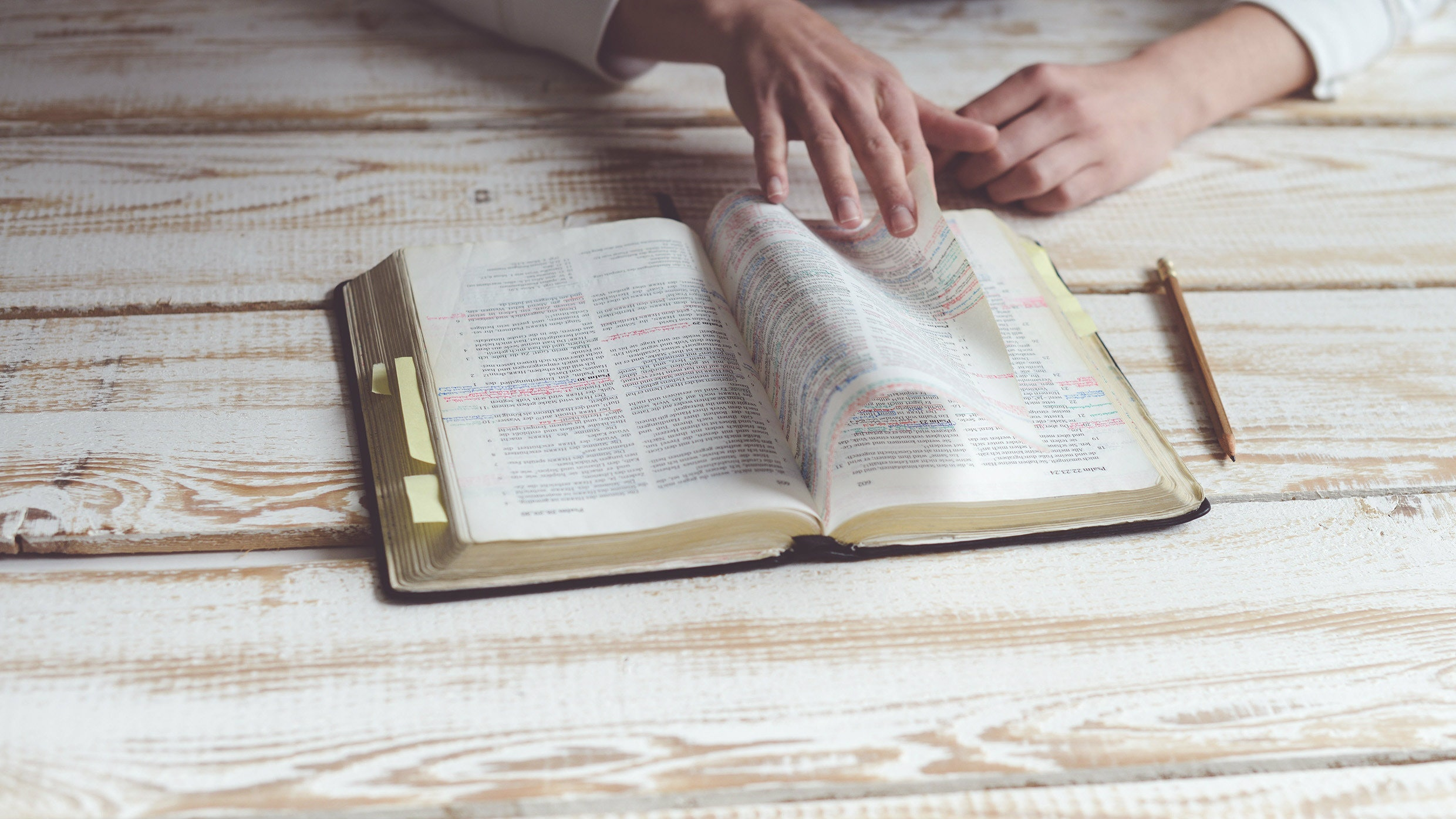 Basics for How to Study the Bible