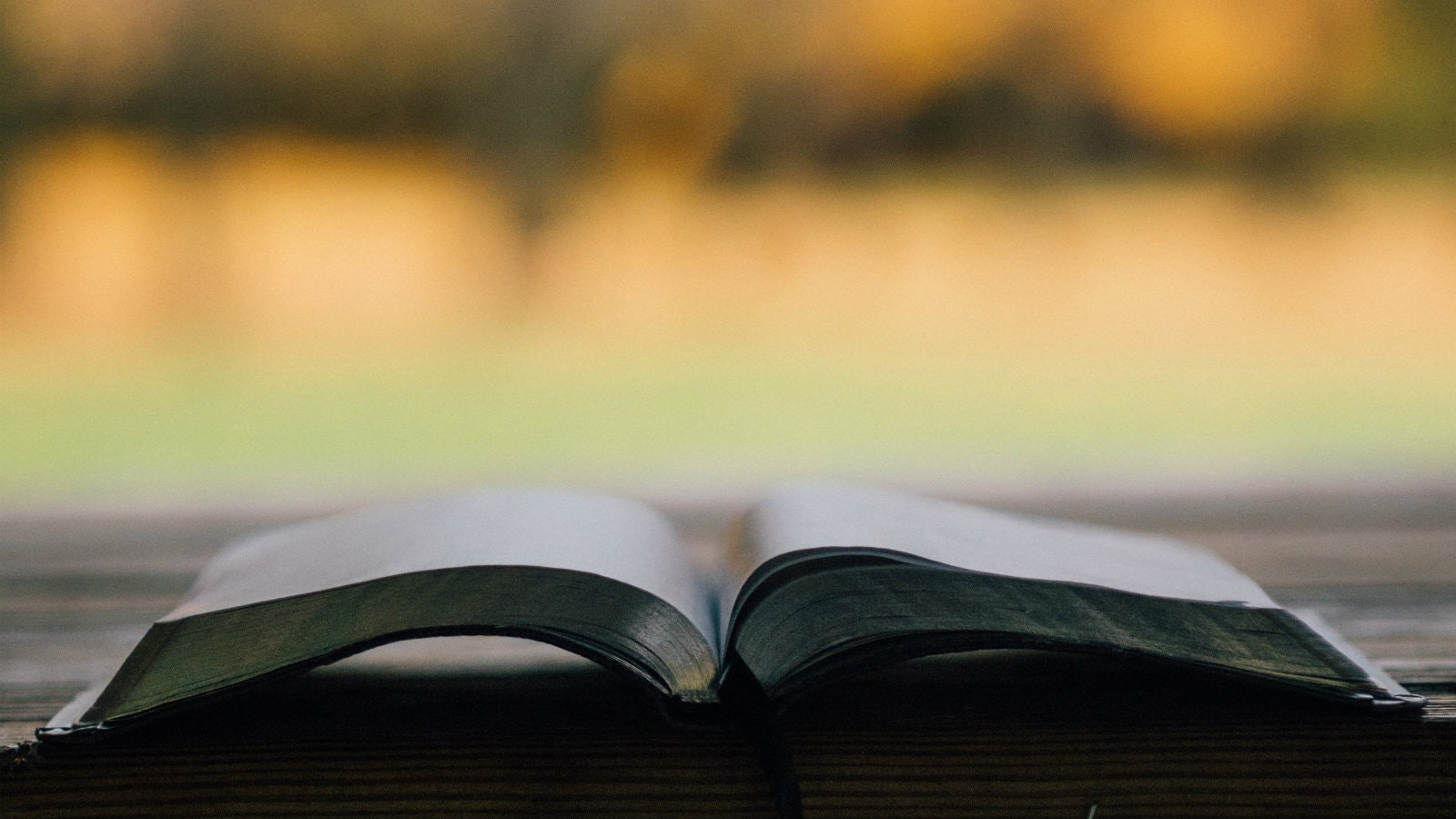 Don't Say God Is Silent with Your Bible Closed | Desiring God