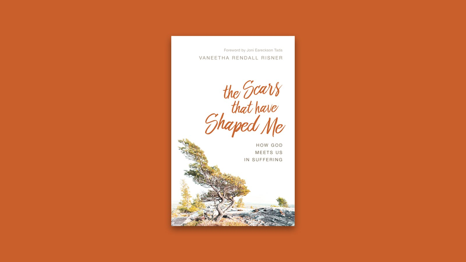 Free ebook the scars that have shaped me desiring god editors note over the weekend of september 12 desiring god offered the scars that have shaped me free of charge in three digital formats pdf mobi fandeluxe Choice Image