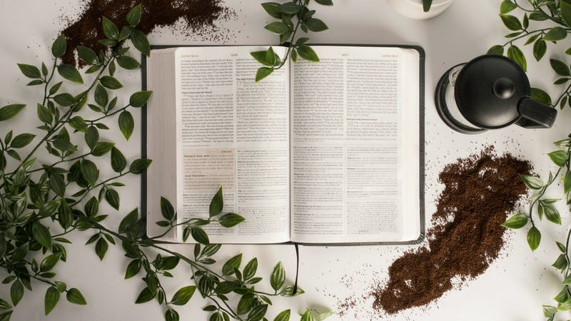 How Has Social Media Changed Bible Reading?