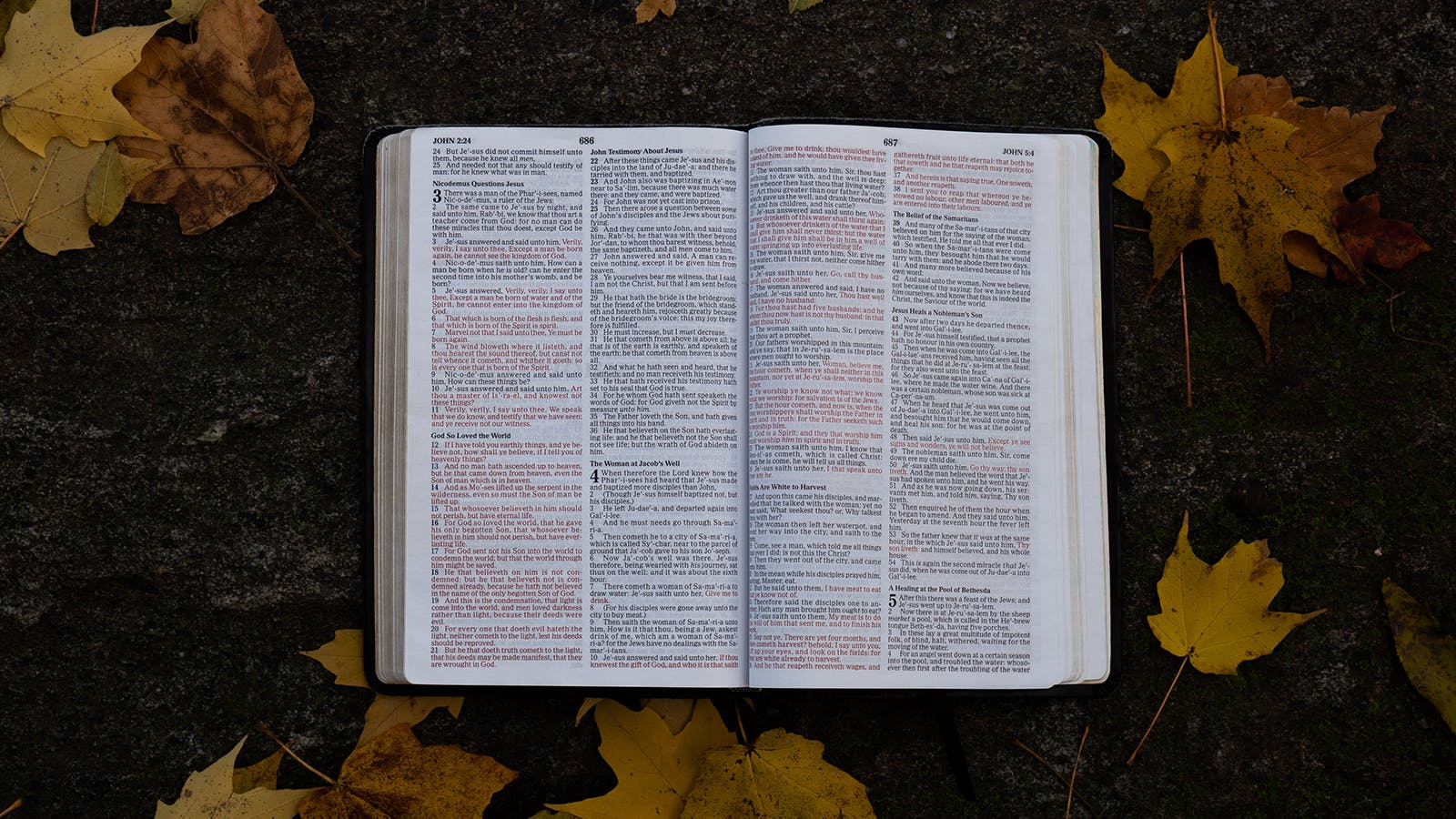 How to Read the Bible Better