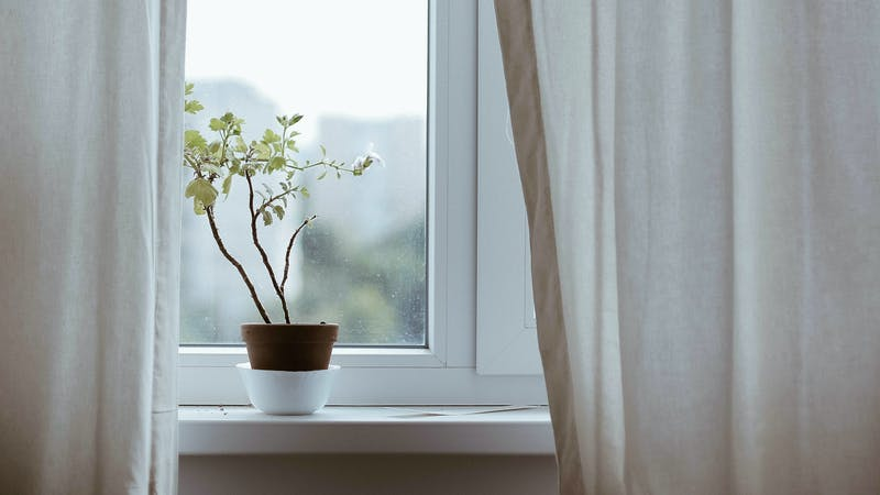 How to Win the War for Morning Devotions