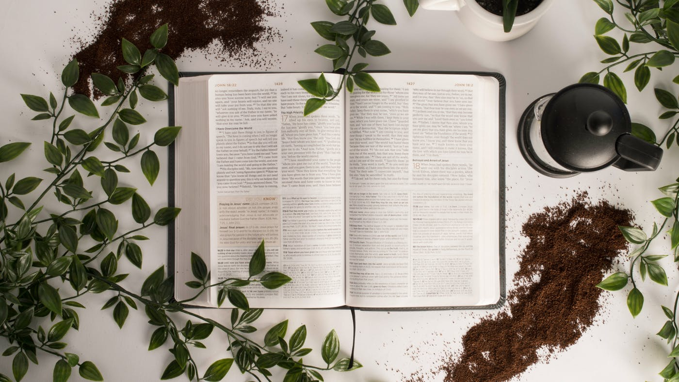 Precept Upon Precept A Common And Serious Problem In Bible