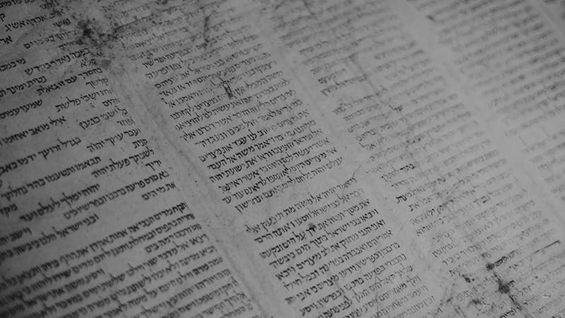 Scripture in Scripture