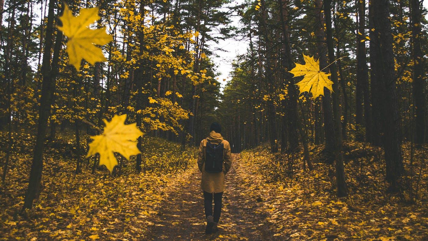 Sin Will Never Make You Happy | Desiring God