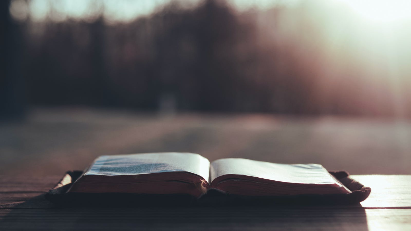 Ten Reasons to Read the Bible Every Day