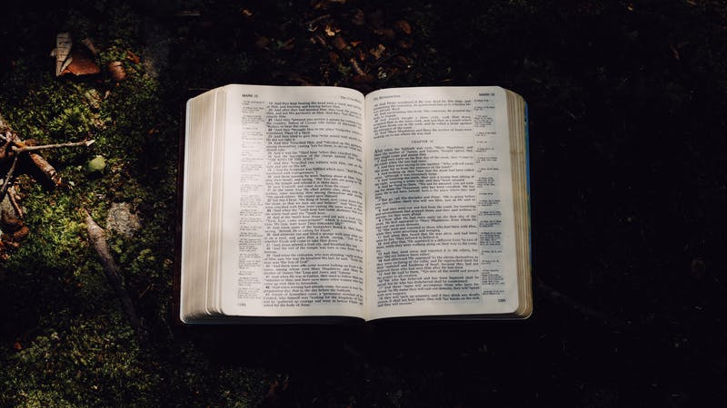 The Bible Is a Lifelong Project