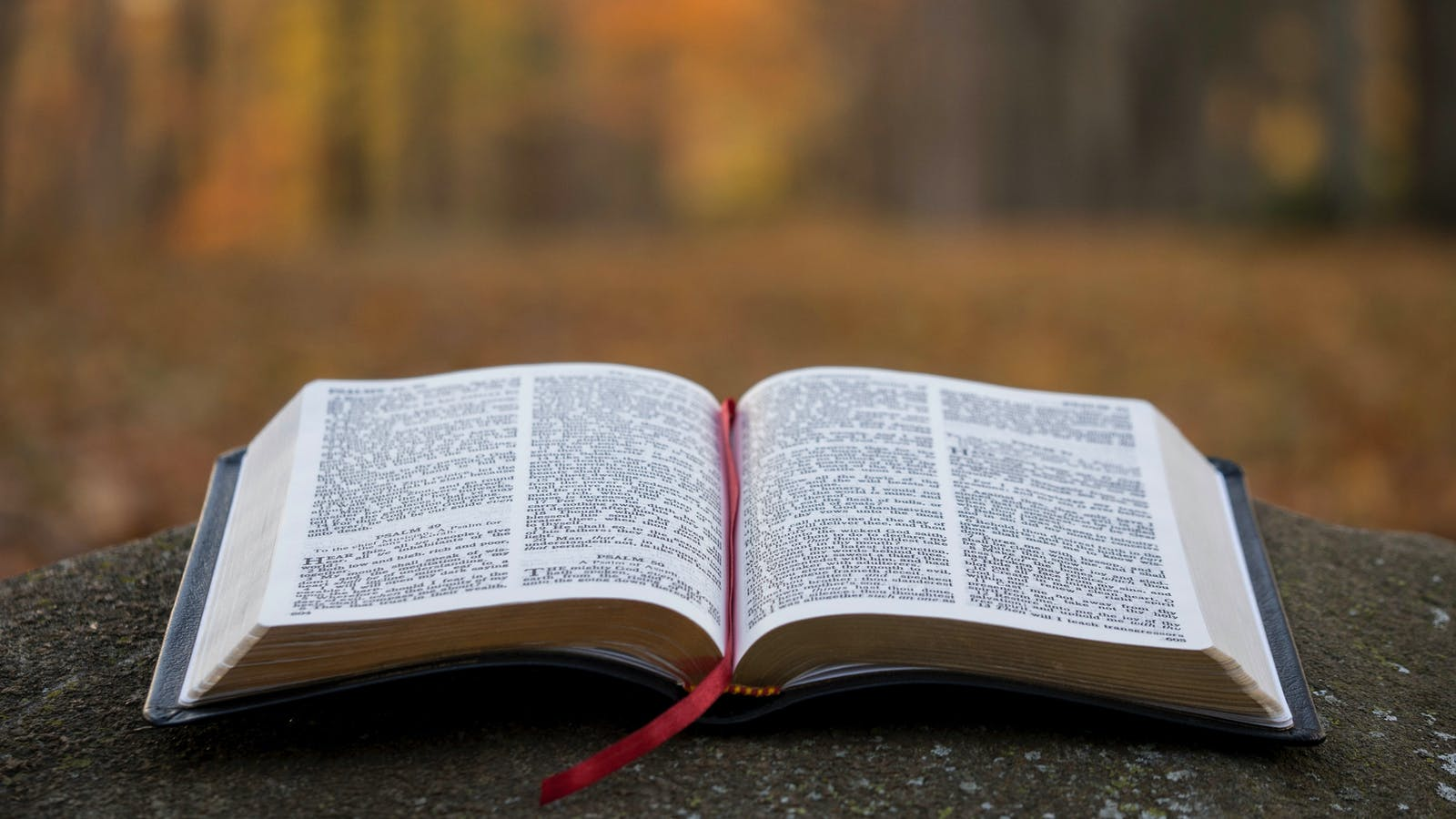 The Most Repeated Verse in the Bible | Desiring God