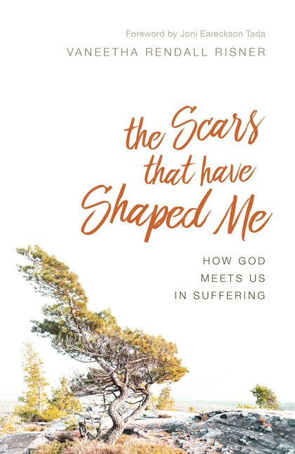 The Scars That Have Shaped Me book