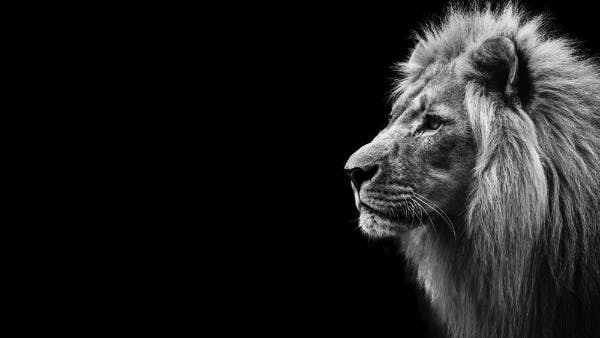 The Secret of Aslan | Desiring God