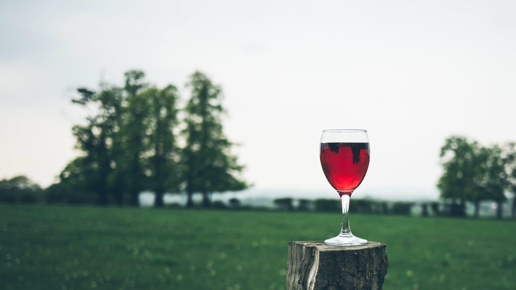 Water, Milk, and Wine