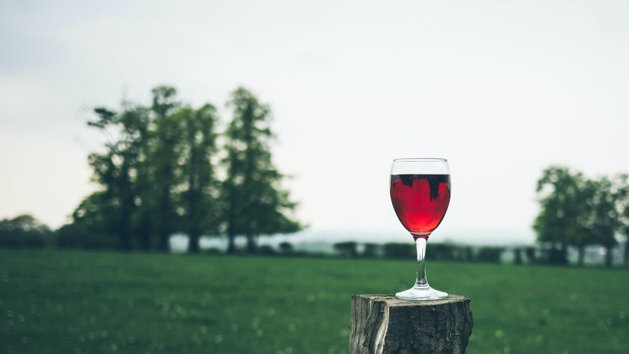 Water, Milk, and Wine: Three Promises for the Thirsty