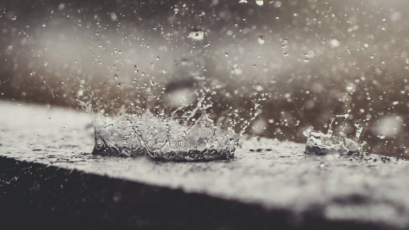 Why Jesus Wept | Desiring God