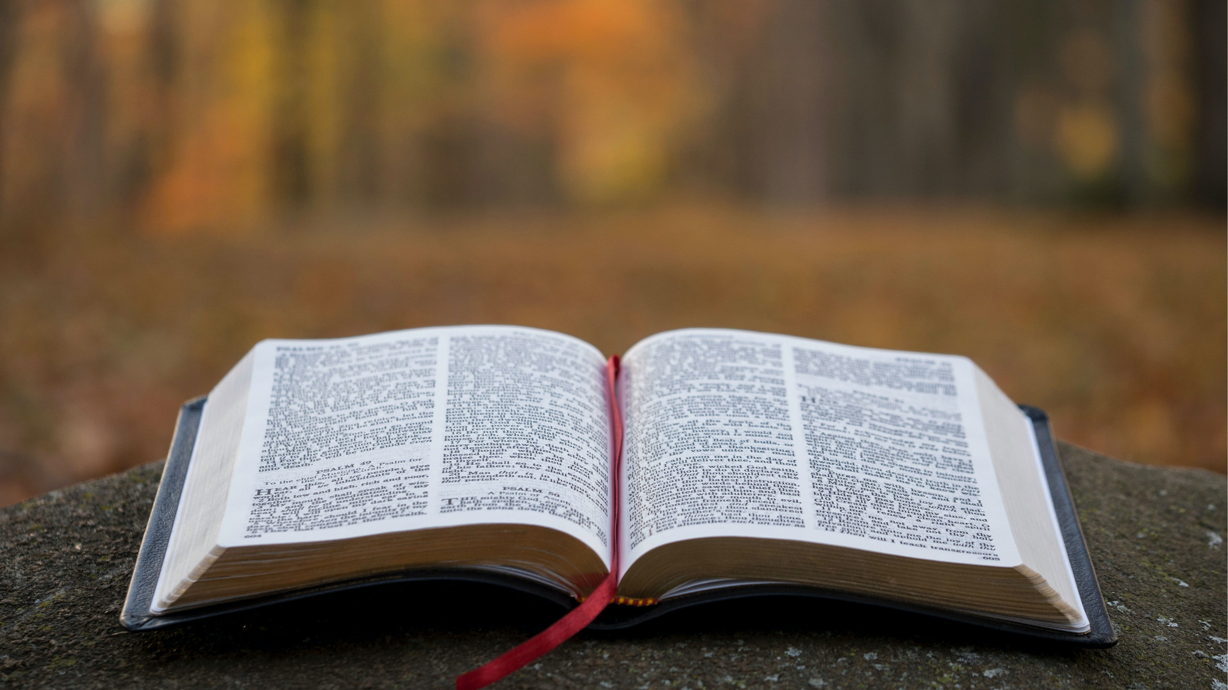 How fast to learn the verse According to the literature Lets have the answers that help you