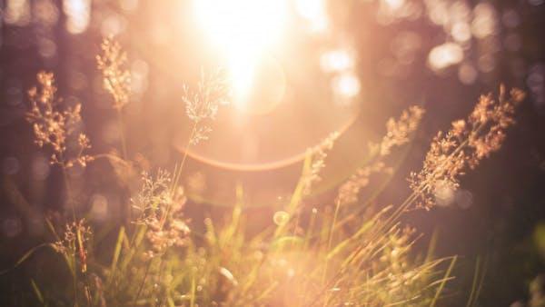 Winning Battles Through Prayer   Desiring God